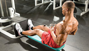 Seated Rows Picture